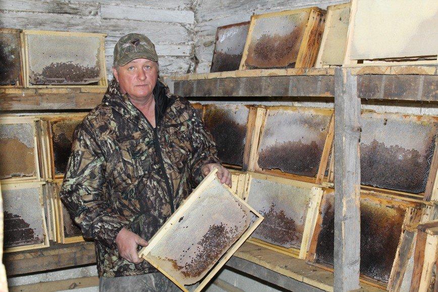 Автор: id293889030, Фотозал: Мужики, Ревизия запасов меда для пчел.