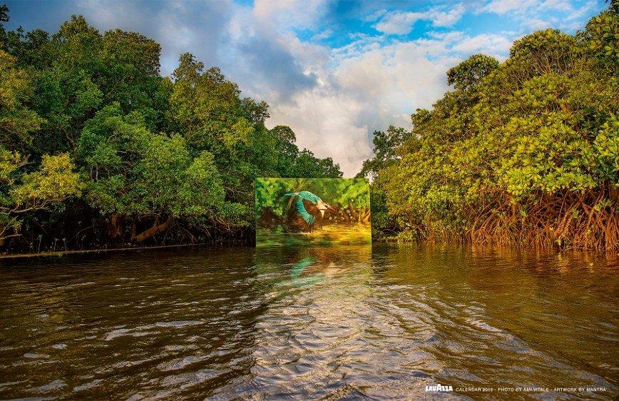 Природа как искусство: календарь на 2019 год, от которого замирает сердце