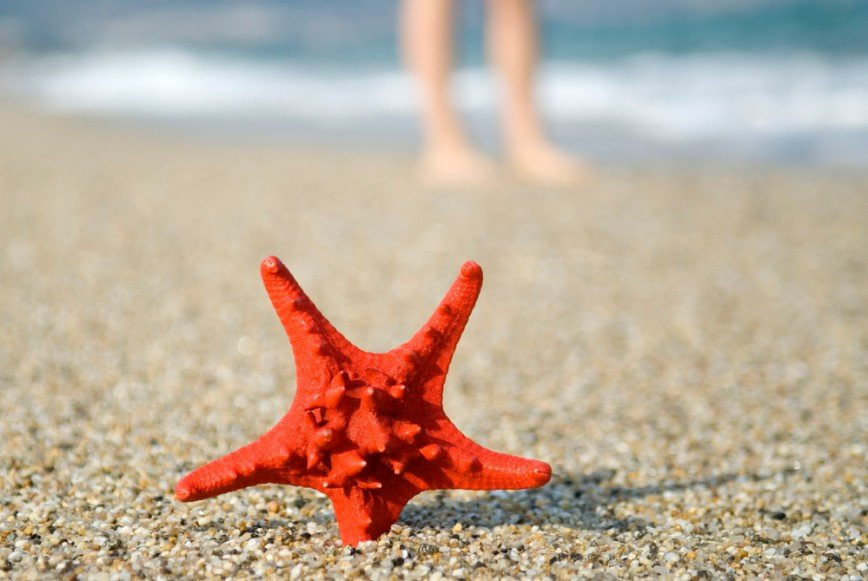 «Звездная болезнь»: о чем говорят сосудистые звёздочки на теле