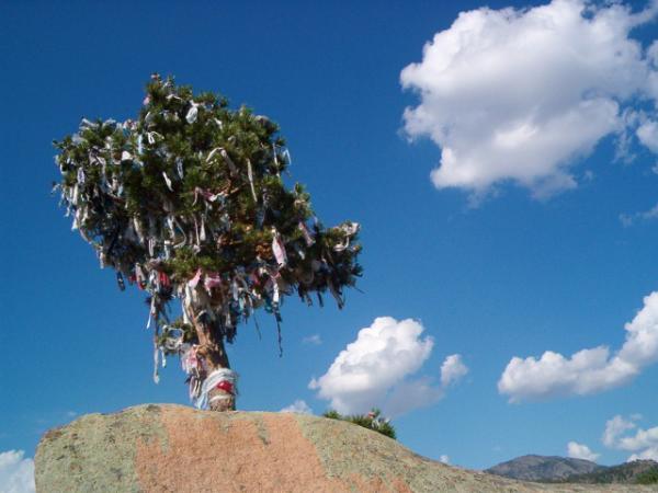 привязывая веревочку к этому дереву, нужно загадать желание - оно обязательно сбудется ;)