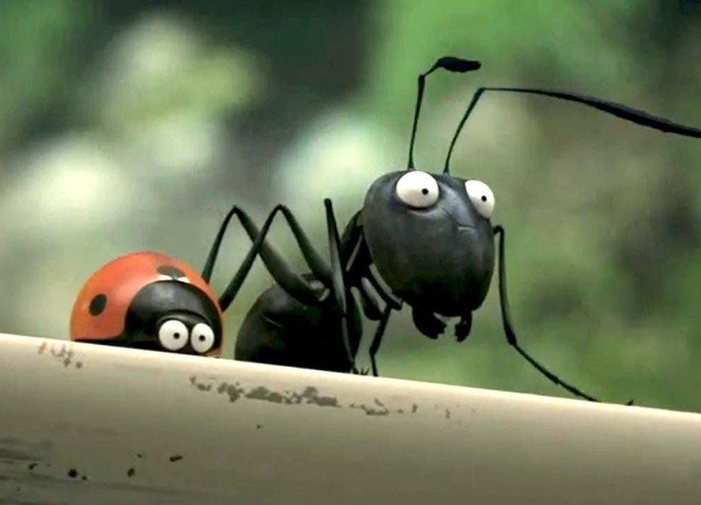 Конец легенде: оказывается, муравьи не любят работать!
