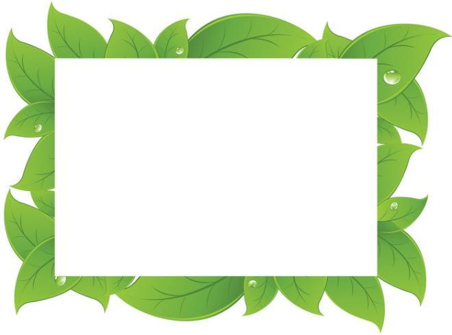 стали известны растительной для рамки картинки добыли