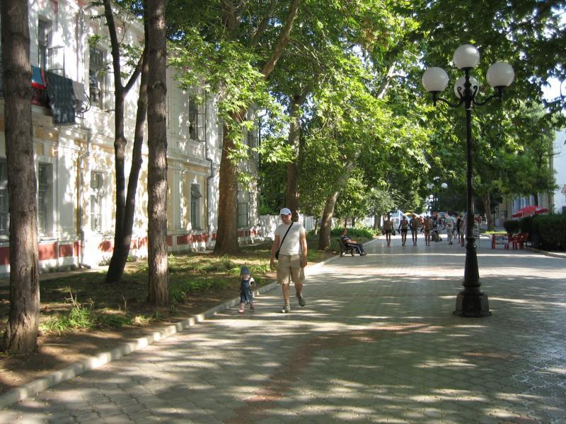 Евпатория-очень зеленый город,все улицы тенистые,есть парк в котором мамы с колясками гуляют в полдень.Это дорога к набережной