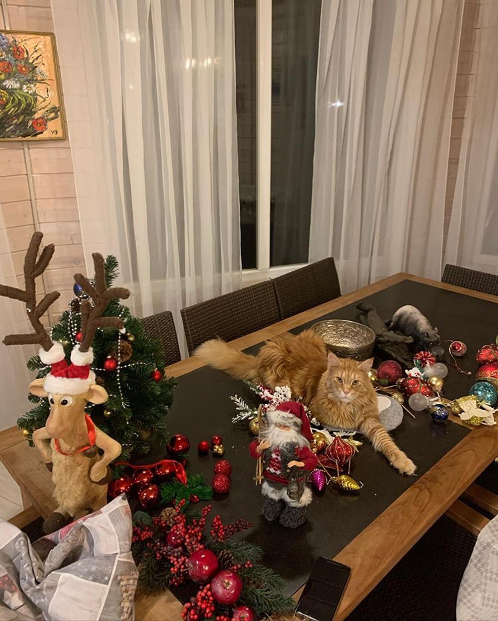 Александр Мясников в преддверии Нового года призвал ценить каждый день жизни