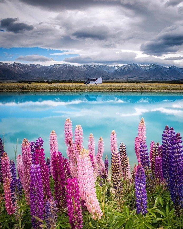 Безумная красота Новой Зеландии