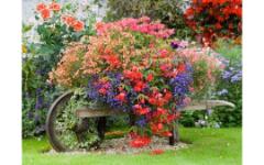 Летний садовый декор