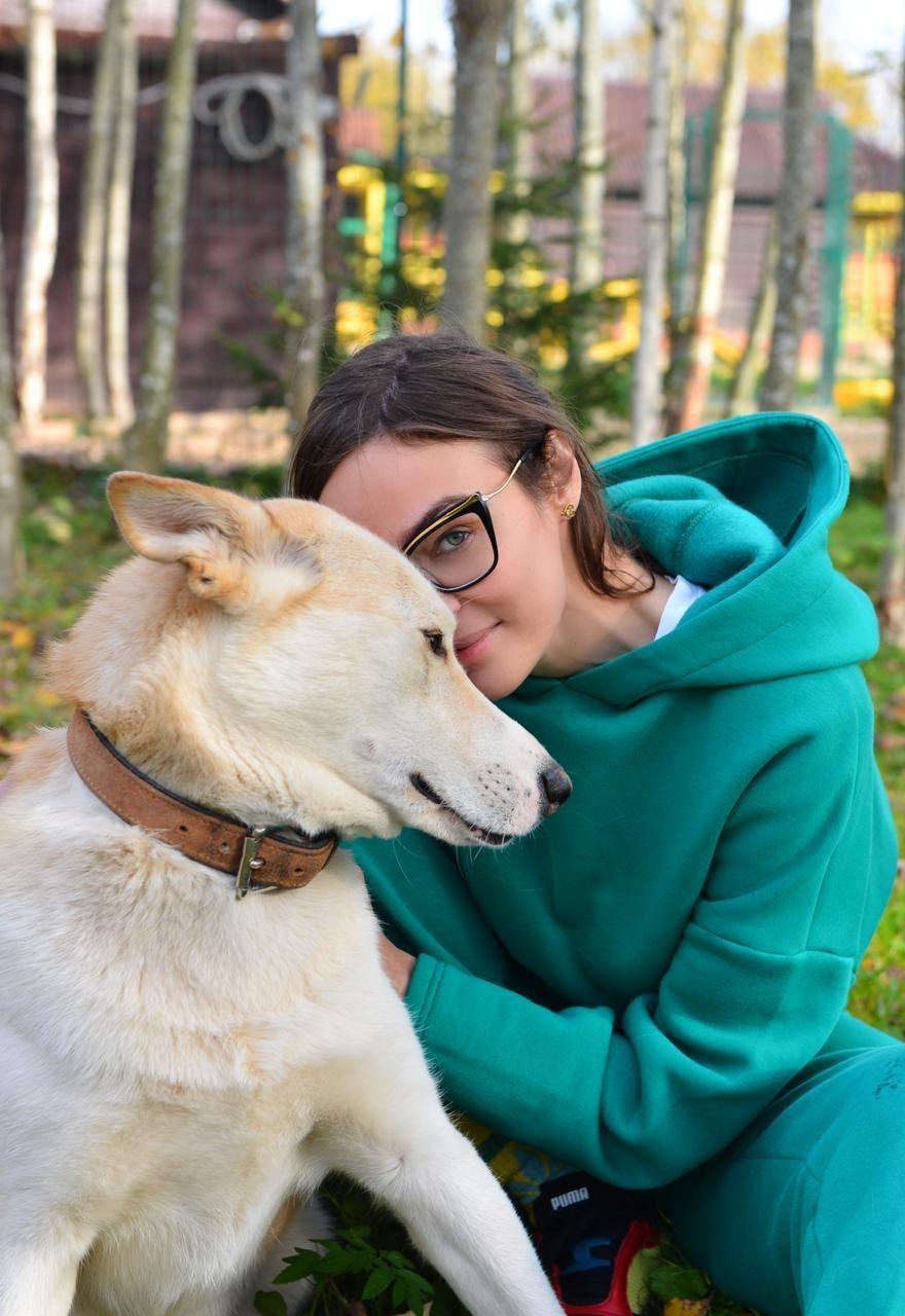 Помогайте животным! Алена Водонаева, Sabi Miss и Black4riday посетили приют животных «Котодетки»