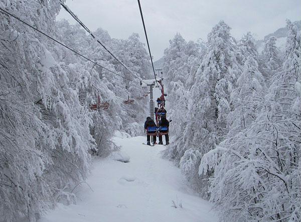 Экскурсии в сочи зимой